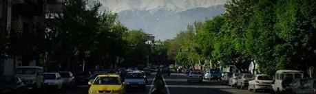خرید گز سهروردی تهران