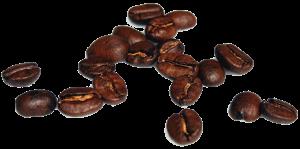 پودر قهوه در کافی گز