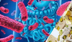 گز پروبیوتیک چیست؟