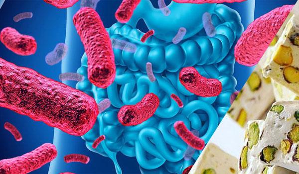 گز پروبیوتیک غنی شده با باکتری های پروبیوتیک