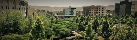 خرید گز خراسان و بلوار دانش آموز مشهد مقدس