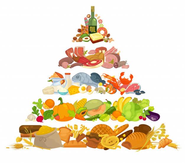 هرم غذایی محصولات گز شیرین 28% مغز بادام آردی