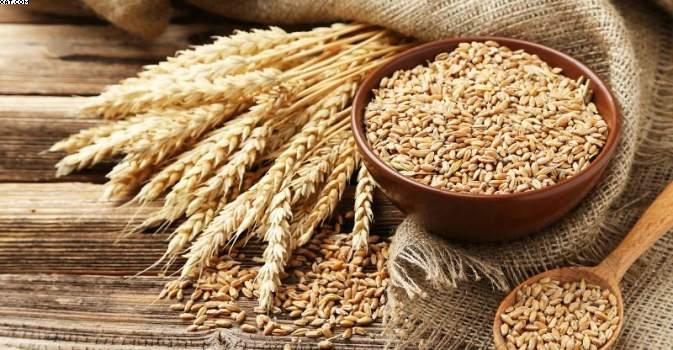 تبدیل دانه به آرد گندم